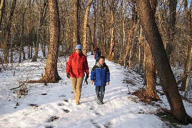 Jack Harrington White Plains Greenway White Plains Greenway A great place for a family walk.