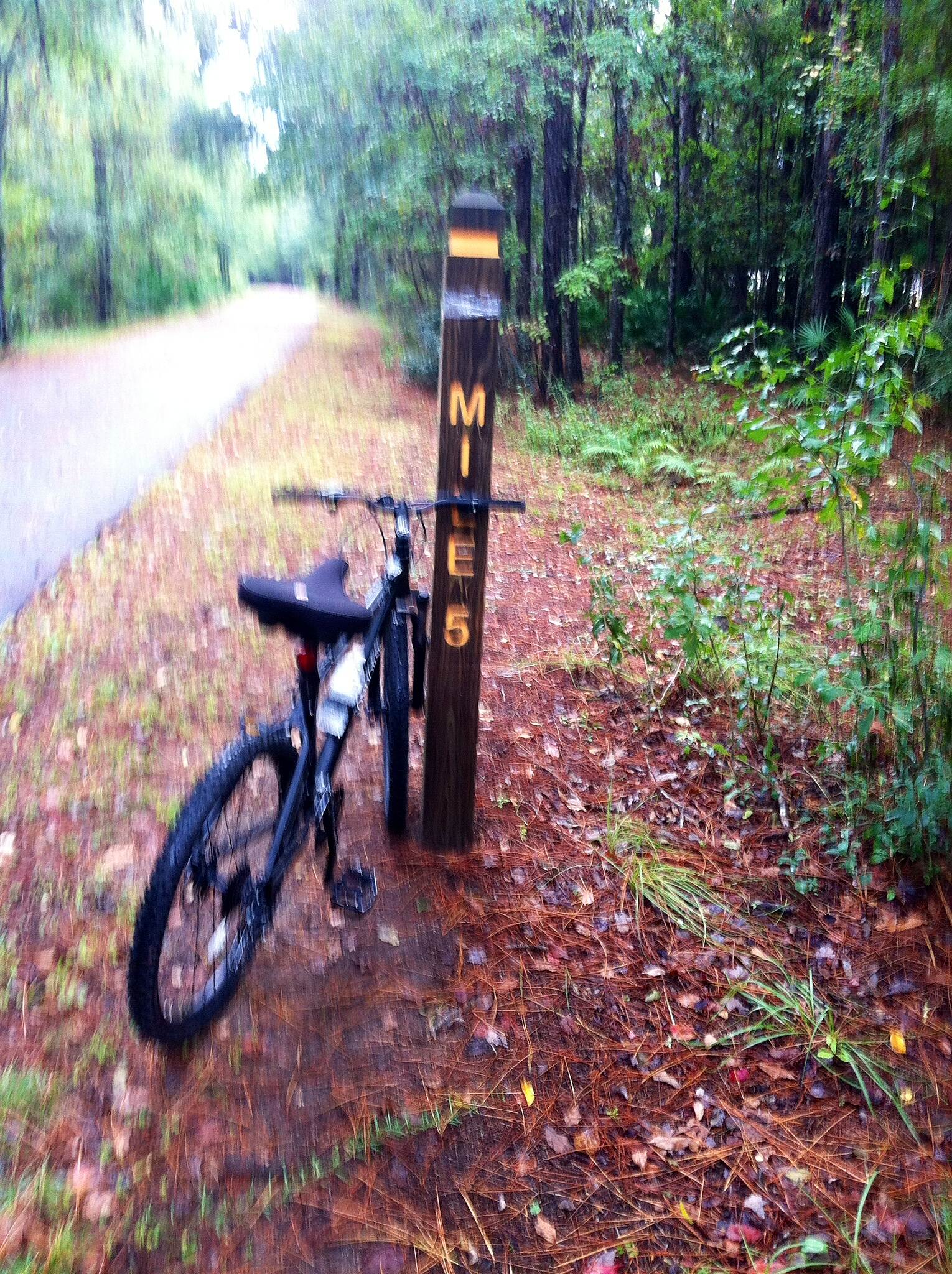 Jacksonville-Baldwin Rail-Trail Mile markers  Mile maker post are very visible.