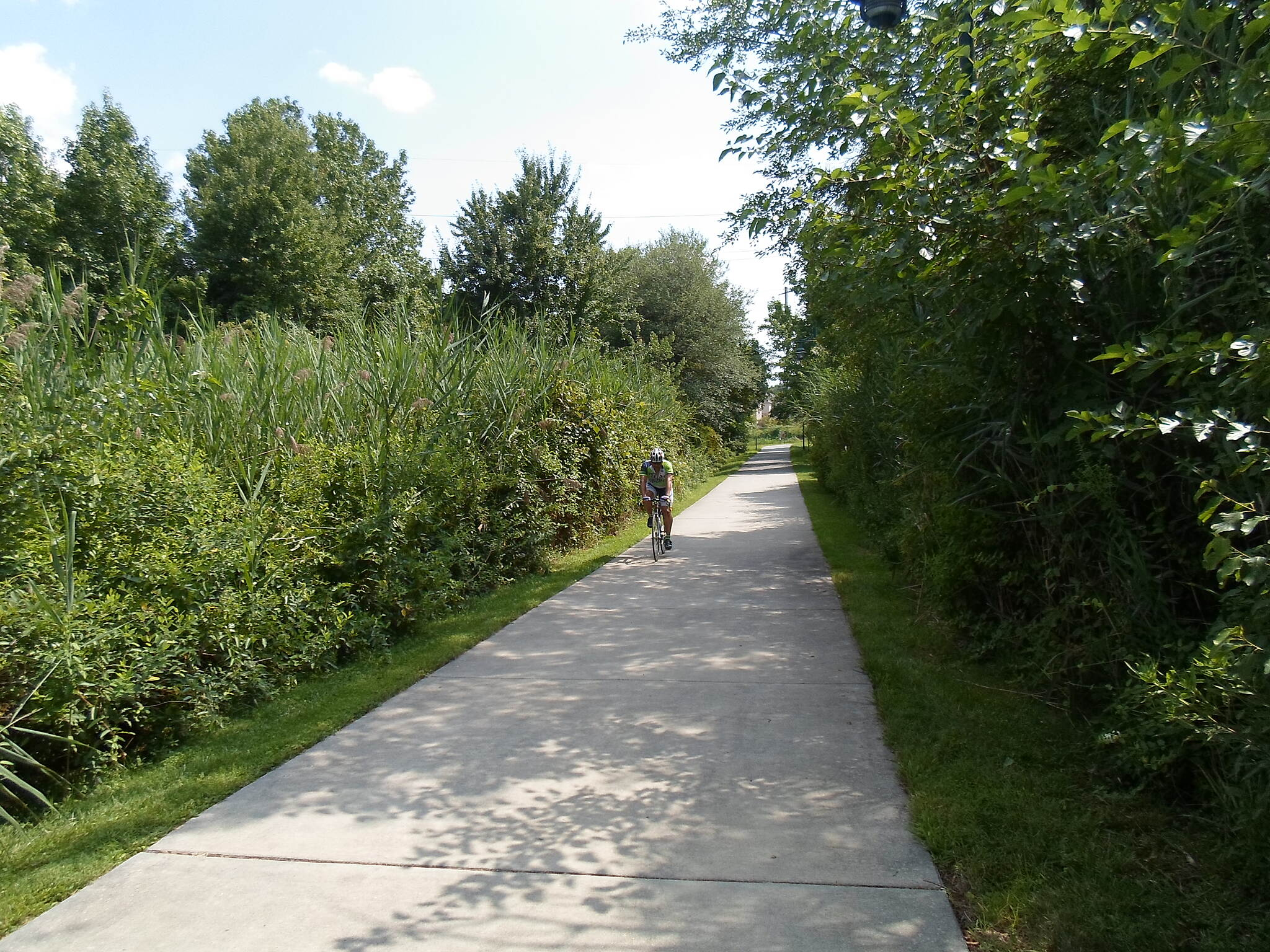 James F. Hall Trail James F. Hall Trail Cyclist passing through the wetlands behind the Univ. of Delaware Technology Park. Taken July 2015.