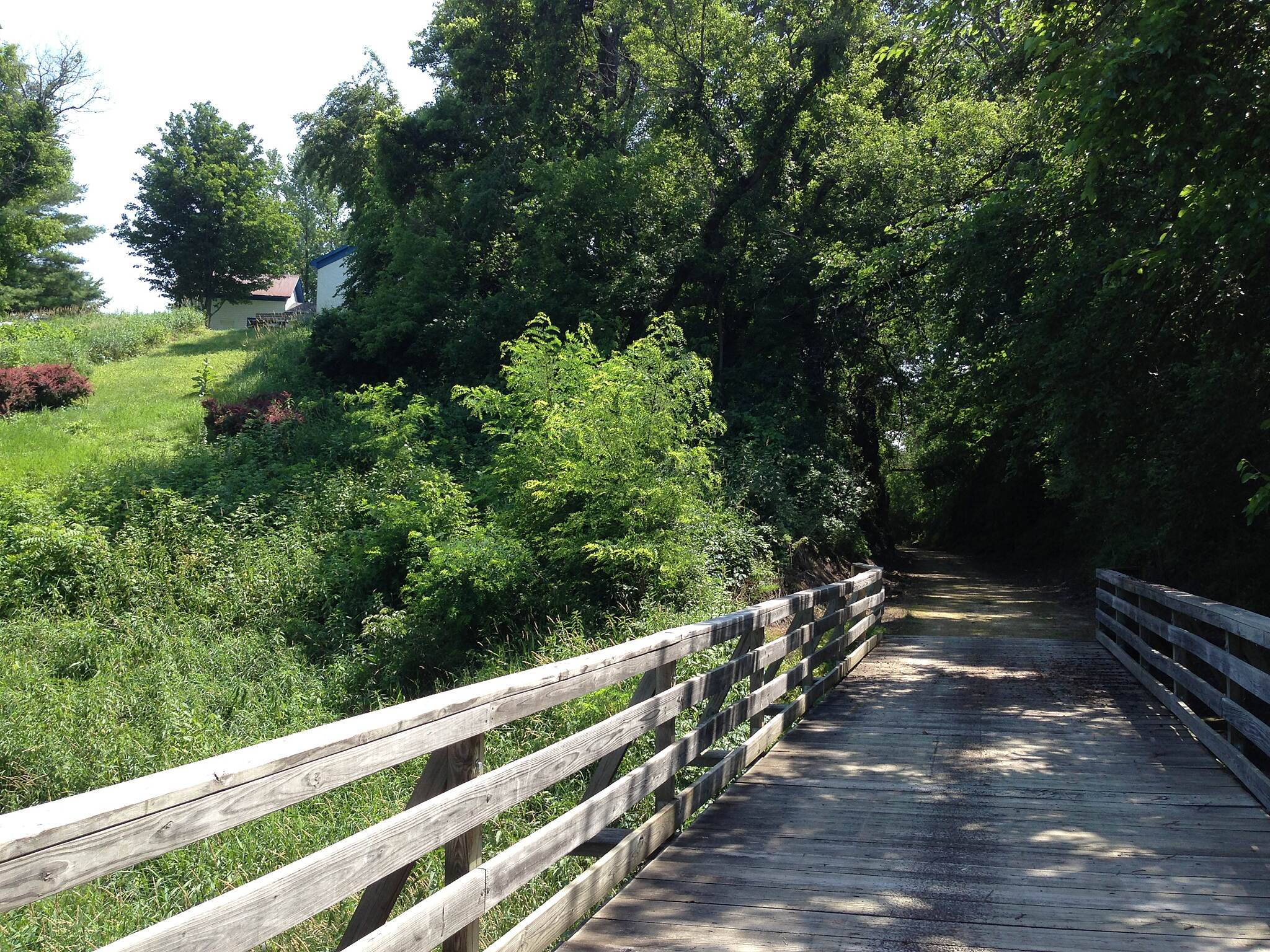 Jane Addams Trail Pretty bridge
