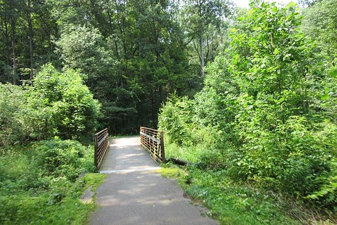 John C. Oliver Multi-Purpose Loop Trail Along the trail Along the trail-July 2015