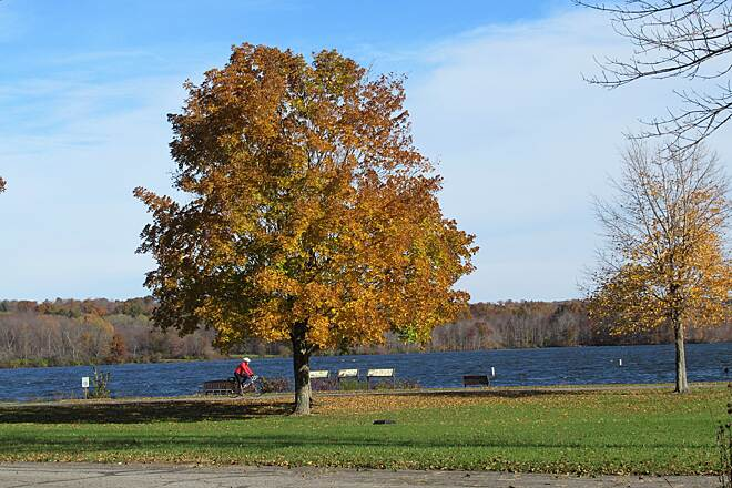 John C. Oliver Multi-Purpose Loop Trail Fall-2018 A cyclist enjoys a fall day riding along the lake.