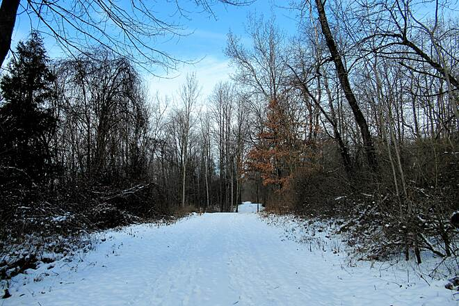 John C. Oliver Multi-Purpose Loop Trail Snow on the trail January 2019, snow covered trail.