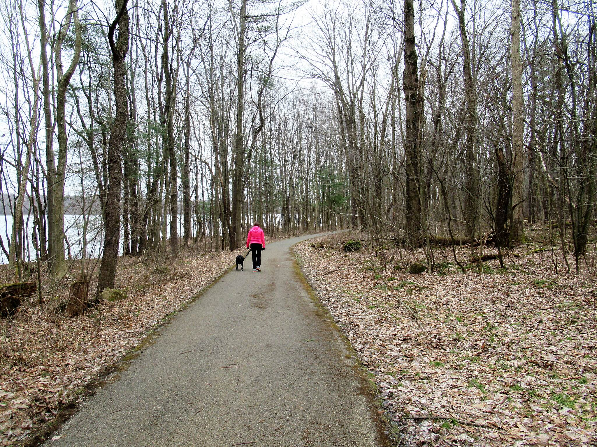 John C. Oliver Multi-Purpose Loop Trail Great for dog walking Great trail for taking your dog out on a walk
