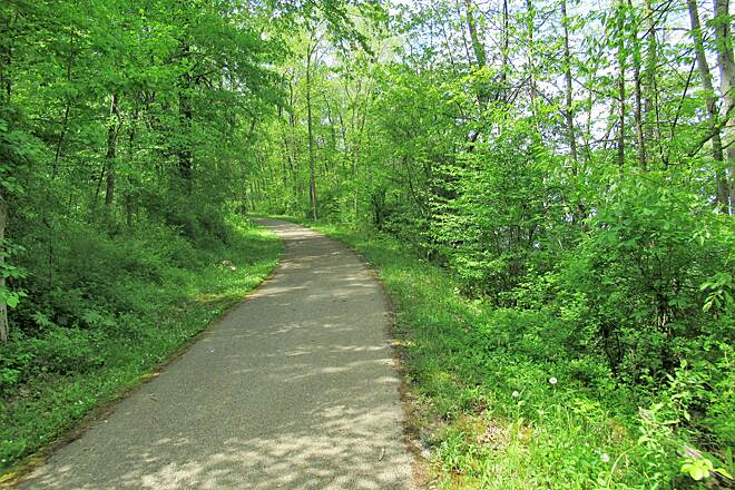 John C. Oliver Multi-Purpose Loop Trail Pretty greenery Pretty greenery along the trail. May, 2019.