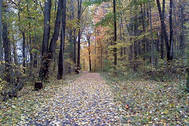John C. Oliver Multi-Purpose Loop Trail Fall at Wilhelm Trail Heading north from the dam