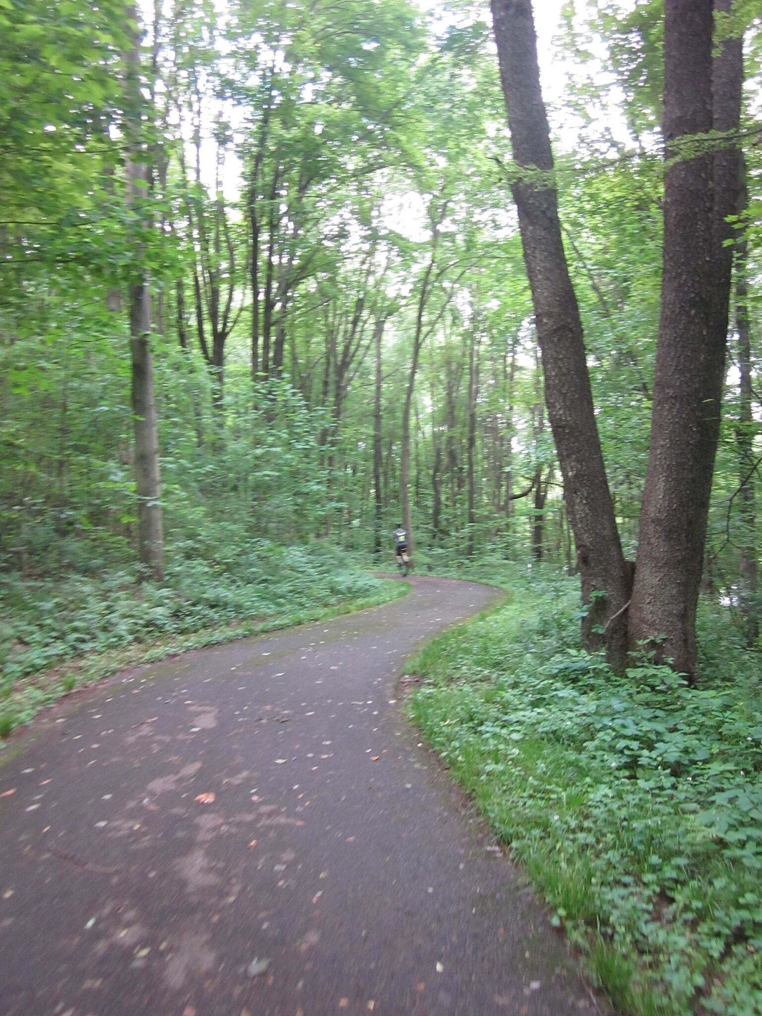 John C. Oliver Multi-Purpose Loop Trail Trail on West side