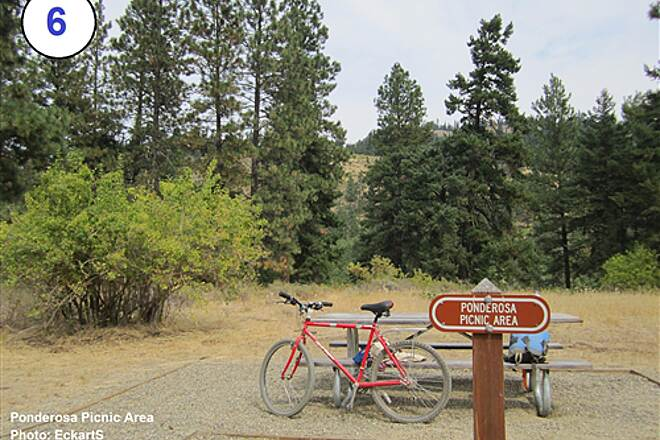 John Wayne Pioneer Trail South Cle Elum Depot to Tunnel 47 6-Ponderosa picnic area