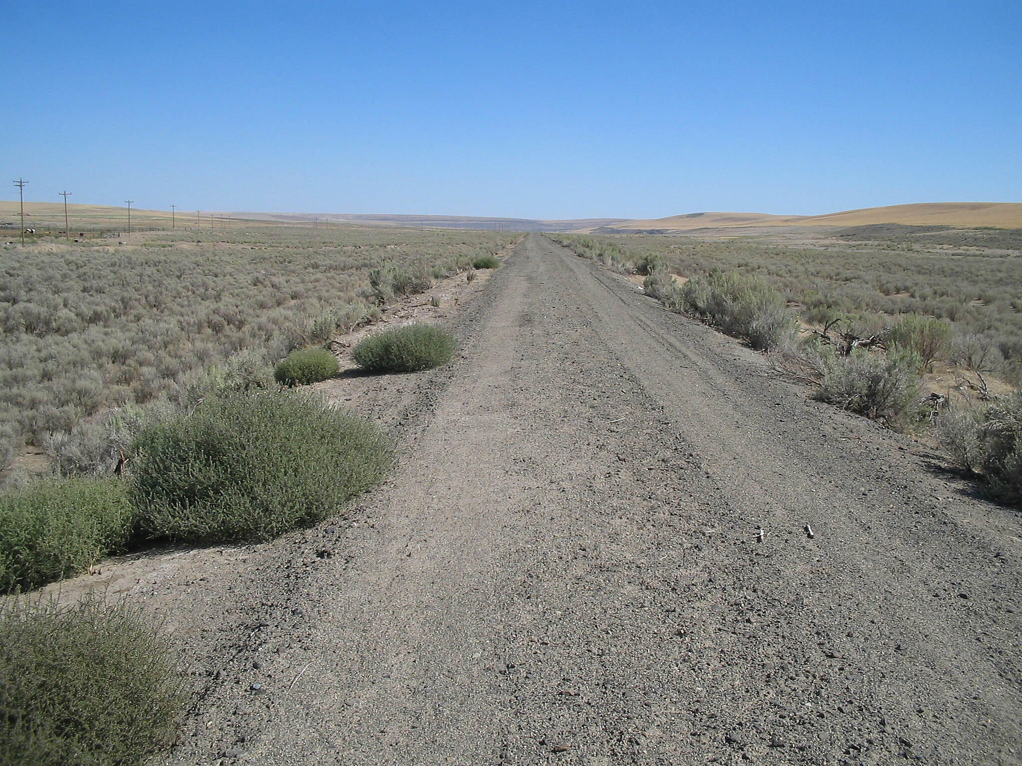 John Wayne Pioneer Trail East of the Columbia River Photo courtesy of the DNR's Southeast Region.
