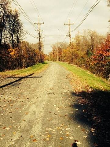 Johnson Trolley Line Trail Ewing Township Span