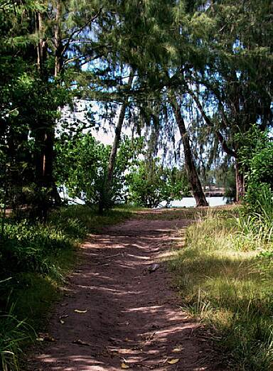 Ke Ala Pupukea Bike Path Ke Ala Pupukea Bike Path Magical Kawela Bay on Ke Ala Pupukea Bike Path