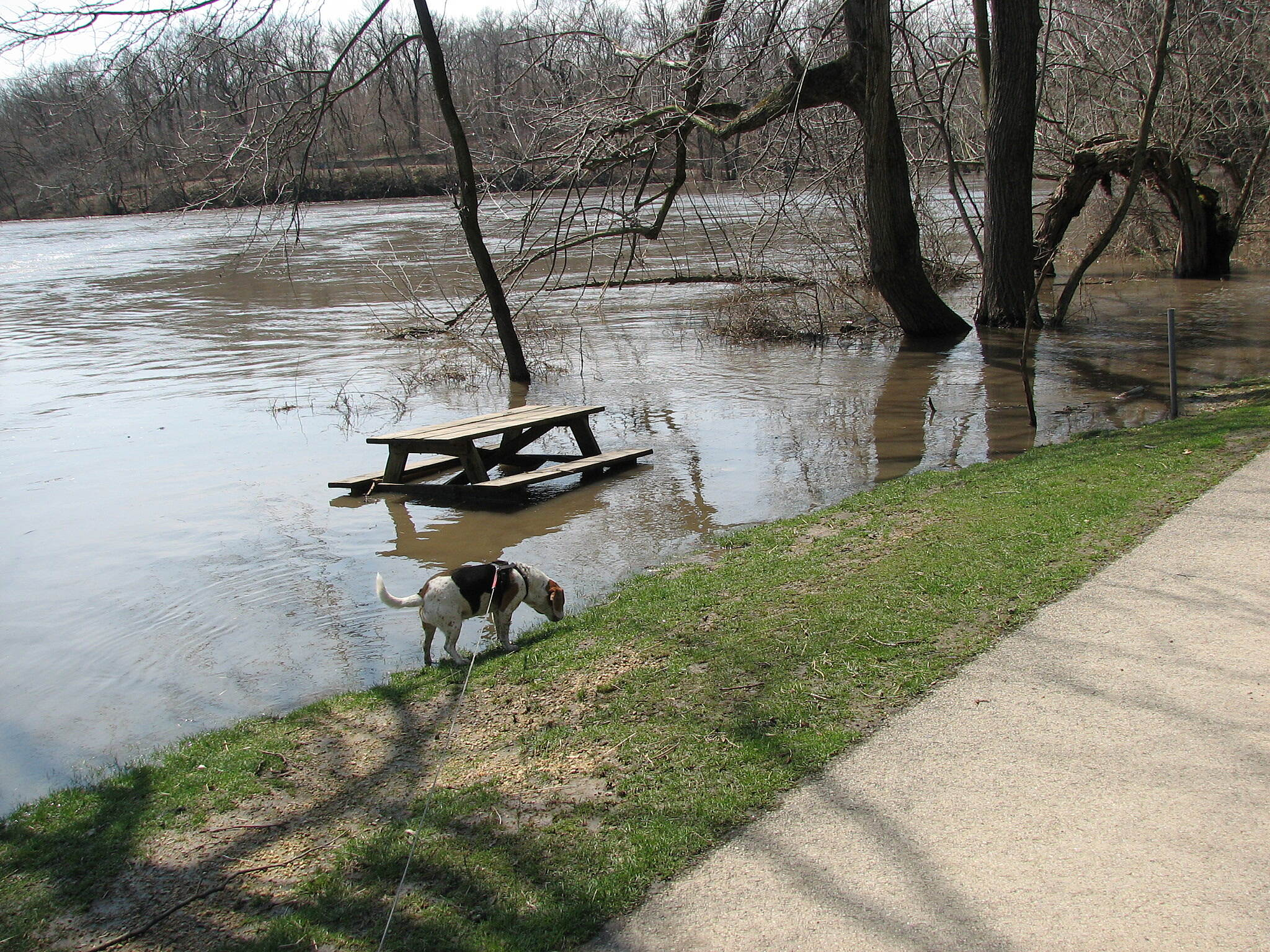 Kishwaukee River Recreation Path 4-21-13