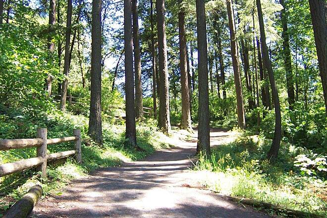 Lacamas Heritage Trail Lacamas Heritage Trail Image provided by Vancouver-Clark Parks and Recreation