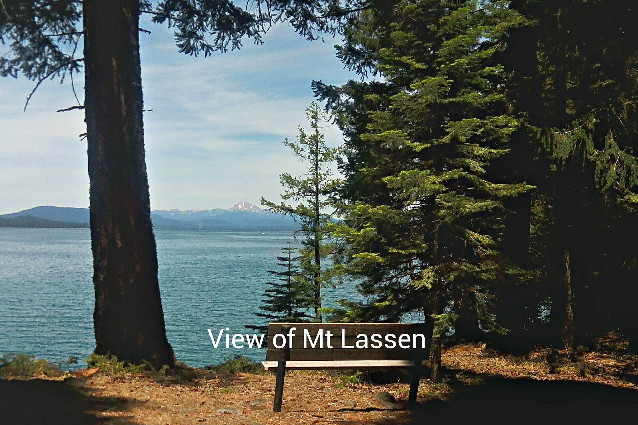 Lake Almanor Recreation Trail Mt Lassen view from trail