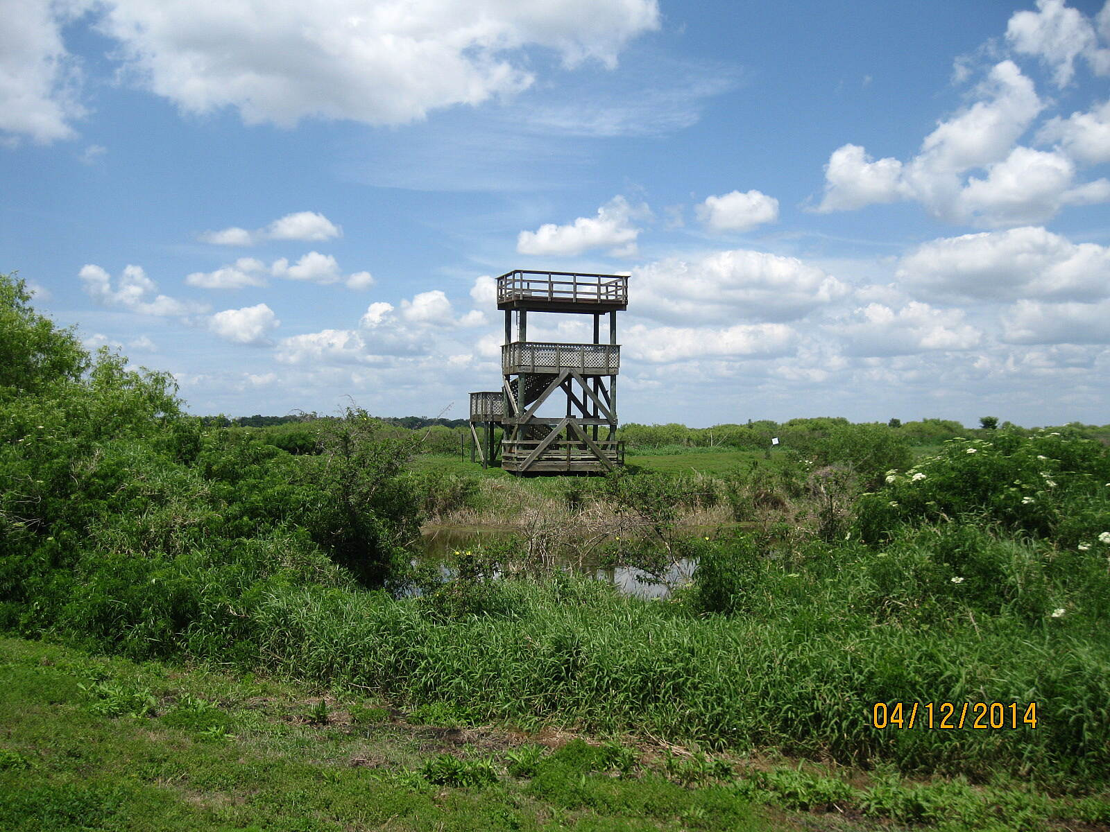 Lake Apopka Loop Trail Observation Tower This observation tower, located about a mile east of the Clay Island trailhead, is accessible from the trail.
