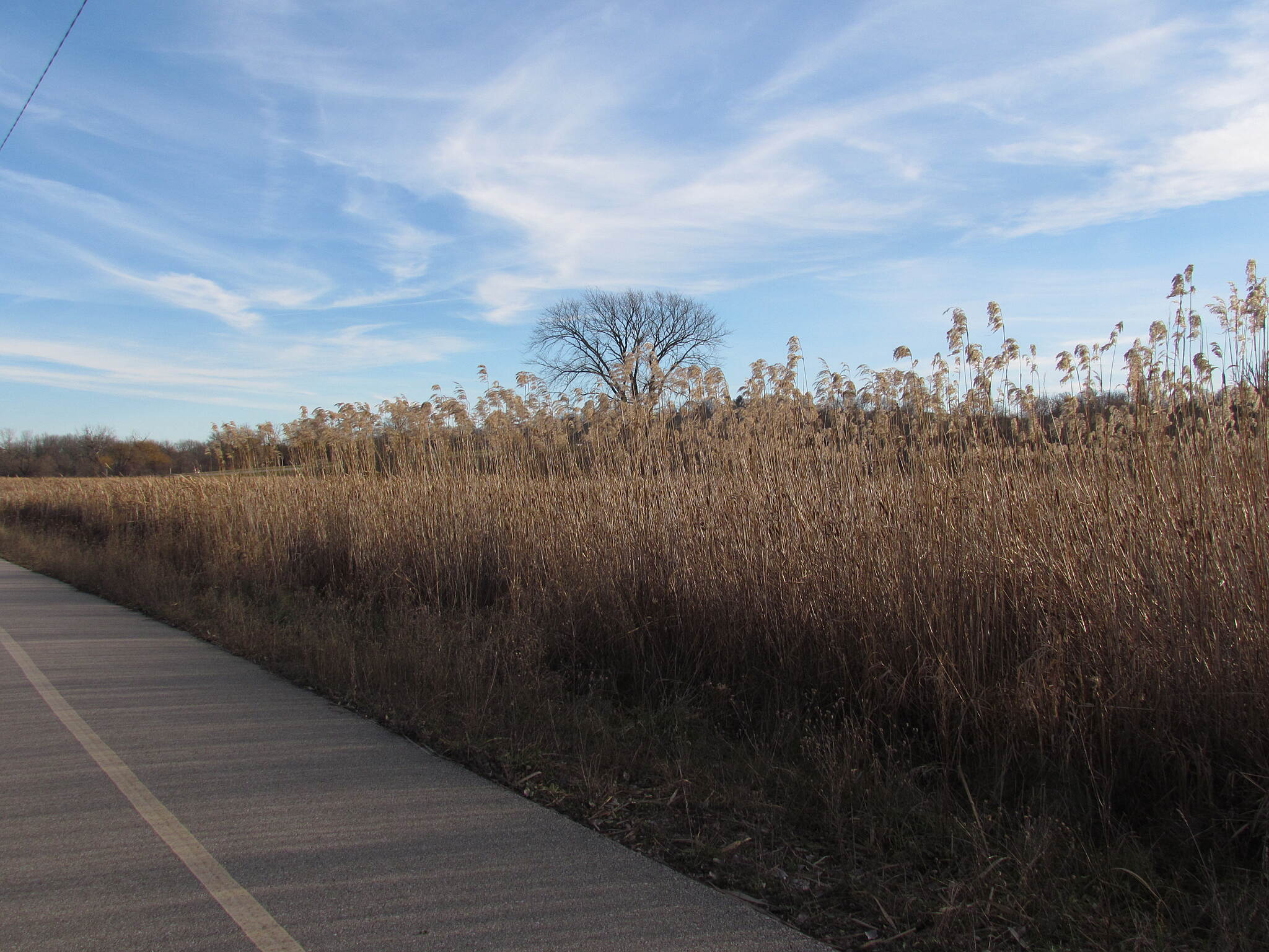 Lake Country Recreation Trail West of Meadowbrook Road