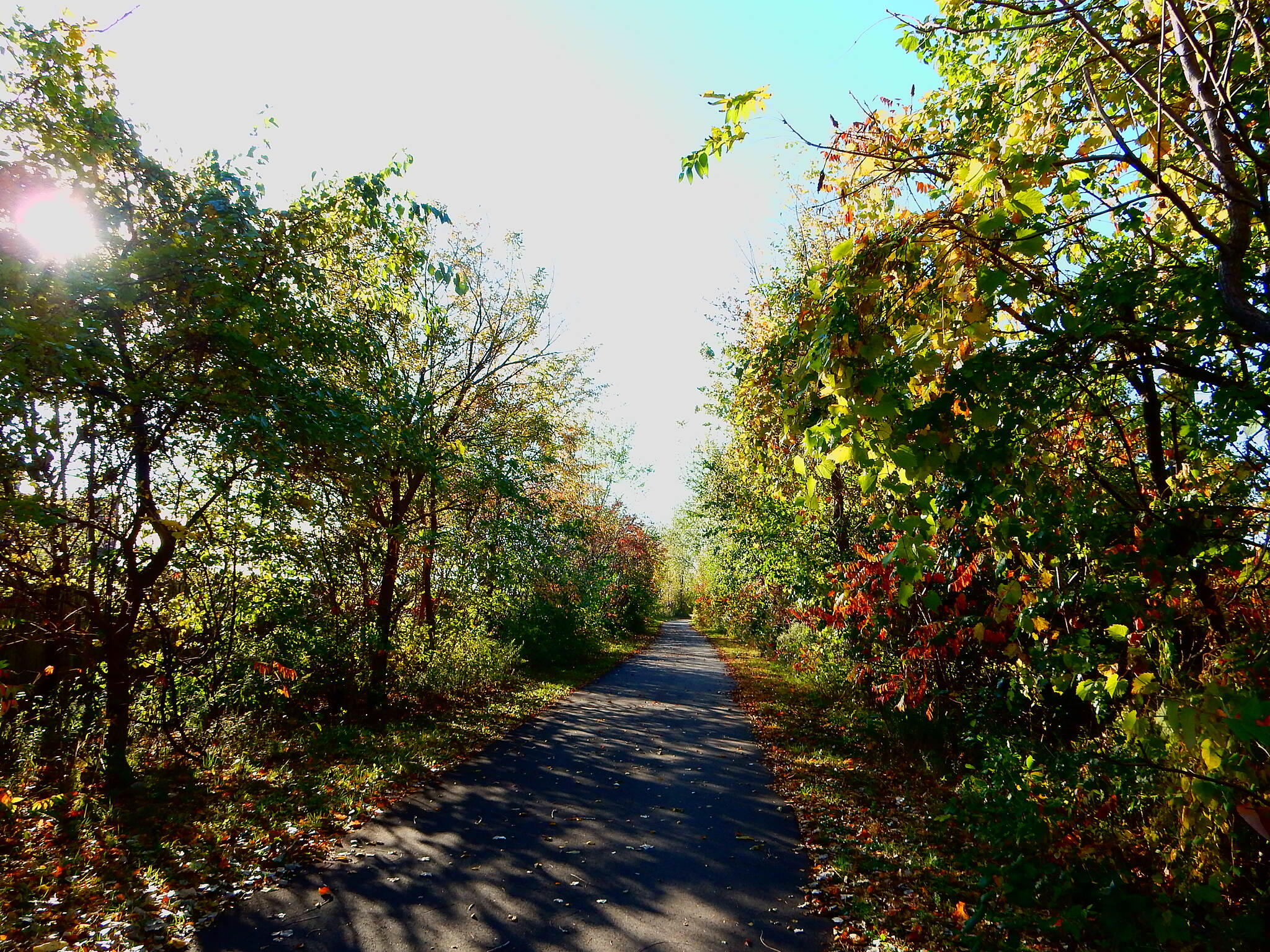 Lake George Trail Heavily wooded. 10-23-16 Just west of the bridge over Indianapolis Blvd. the trail becomes thick with trees on both sides.