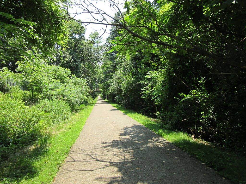 Lake Metroparks Greenway Corridor Trail-July 2015 along the trail-July 2015