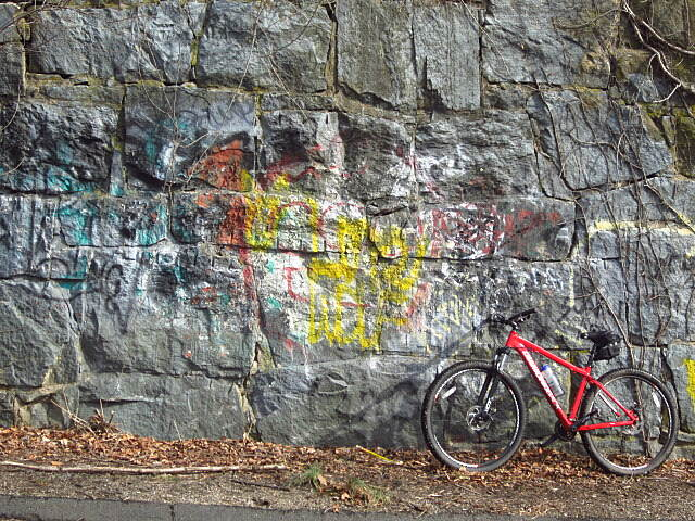 Larkin State Park Trail Grafitti Bike