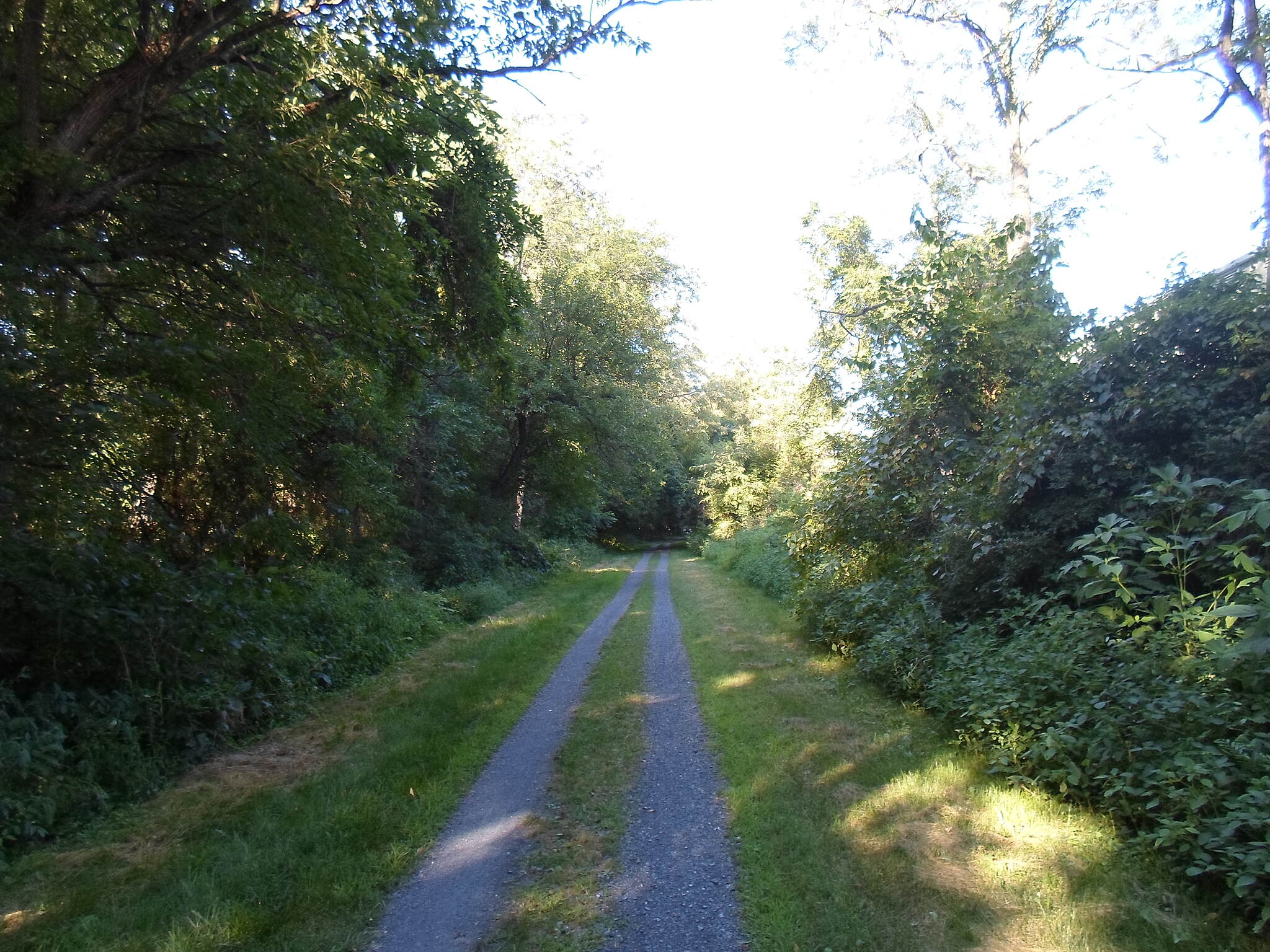 Lebanon Valley Rail-Trail Lebanon Valley Rail Trail Straight path through the woods, taken west of Colebrook in Aug. 2015.