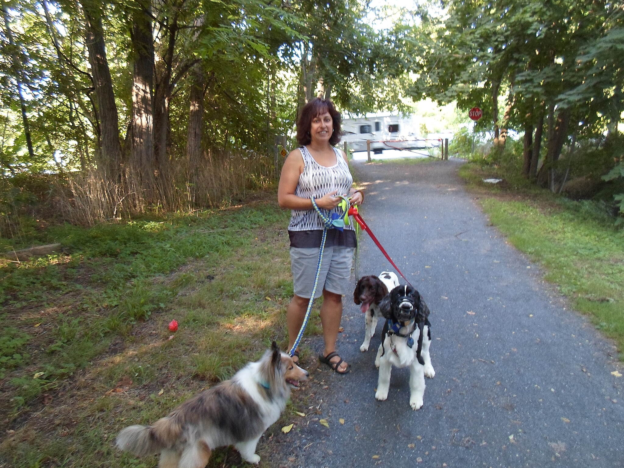 Lebanon Valley Rail-Trail Lebanon Valley Rail Trail This woman was spending the warm, summer evening walking her dogs along the trail in Colebrook. Taken Aug. 2015.