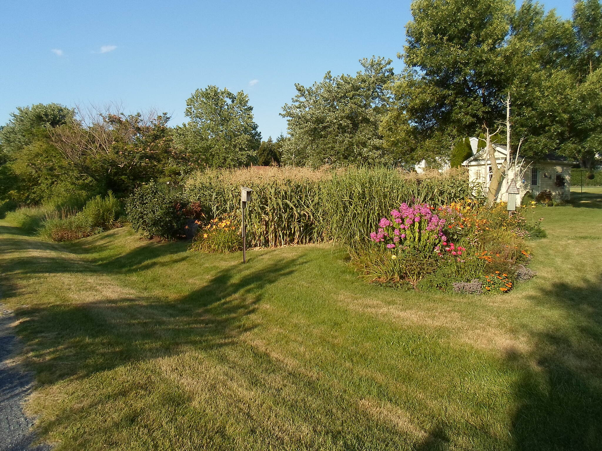 Lebanon Valley Rail-Trail Lebanon Valley Rail Trail Backyards and gardens visible from the trail, fittingly in Lawn. Taken Aug. 2015.