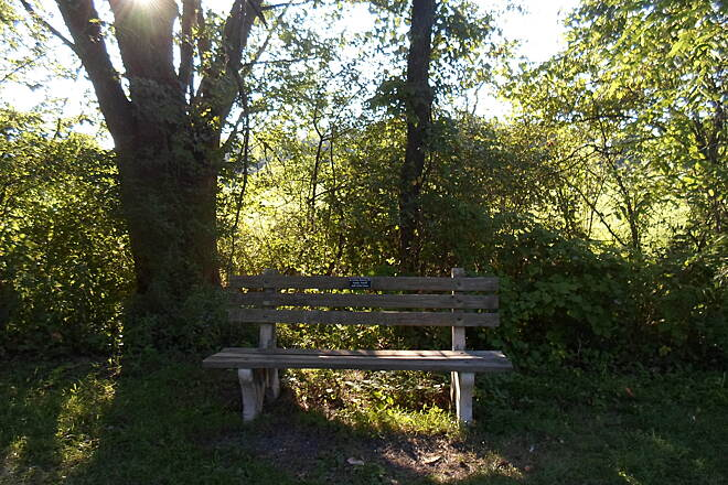 Lebanon Valley Rail-Trail Lebanon Valley Rail Trail Bench along the trail in the woods southwest of Lawn. Taken Aug. 2015.