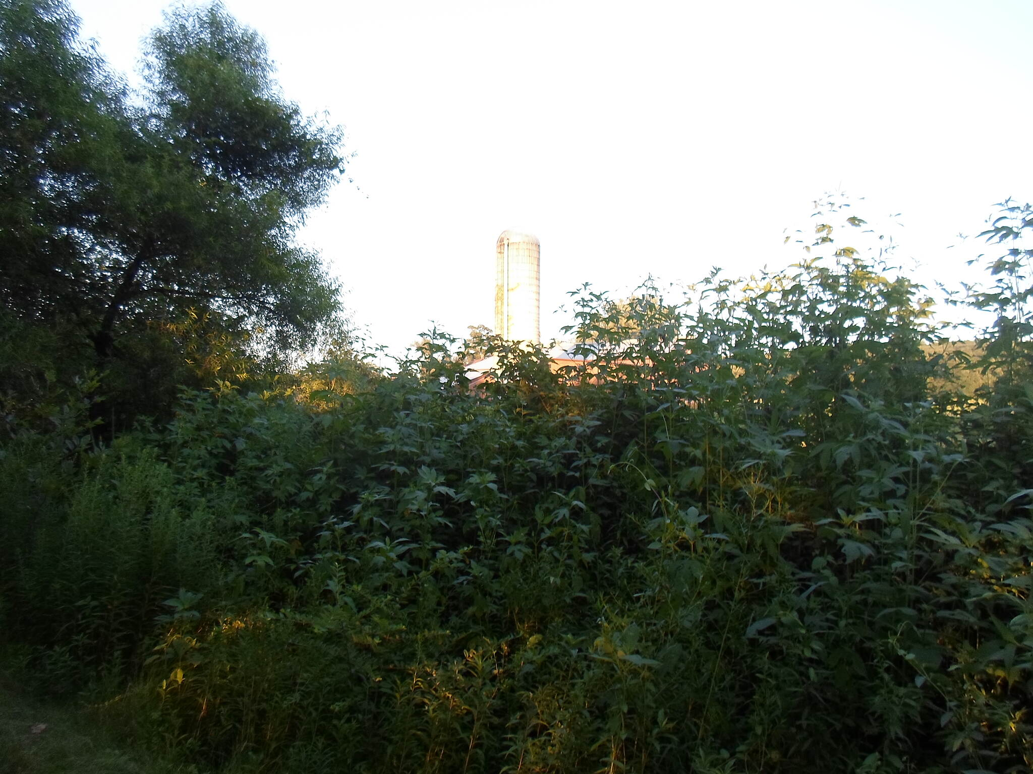 Lebanon Valley Rail-Trail Lebanon Valley Rail Trail Silo visible from the trail northeast of the Lebanon-Lancaster county line. Taken Aug. 2015.