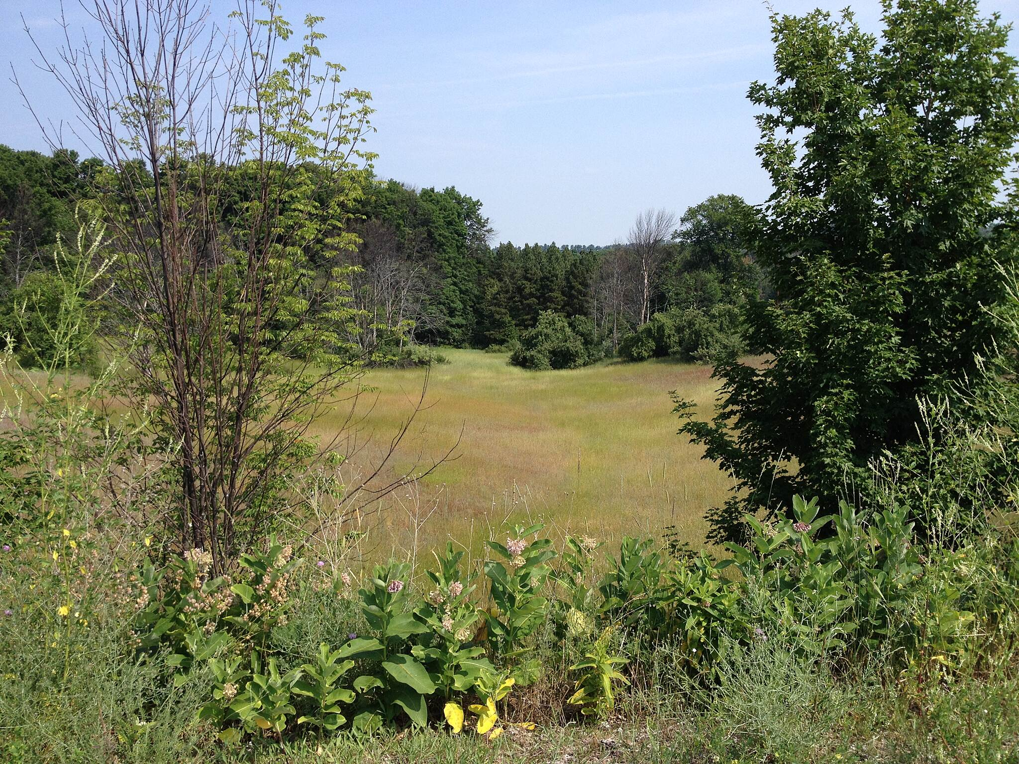 Leelanau Trail 7/2014 Trail runs through beautiful meadows and cherry orchards. 7/2014