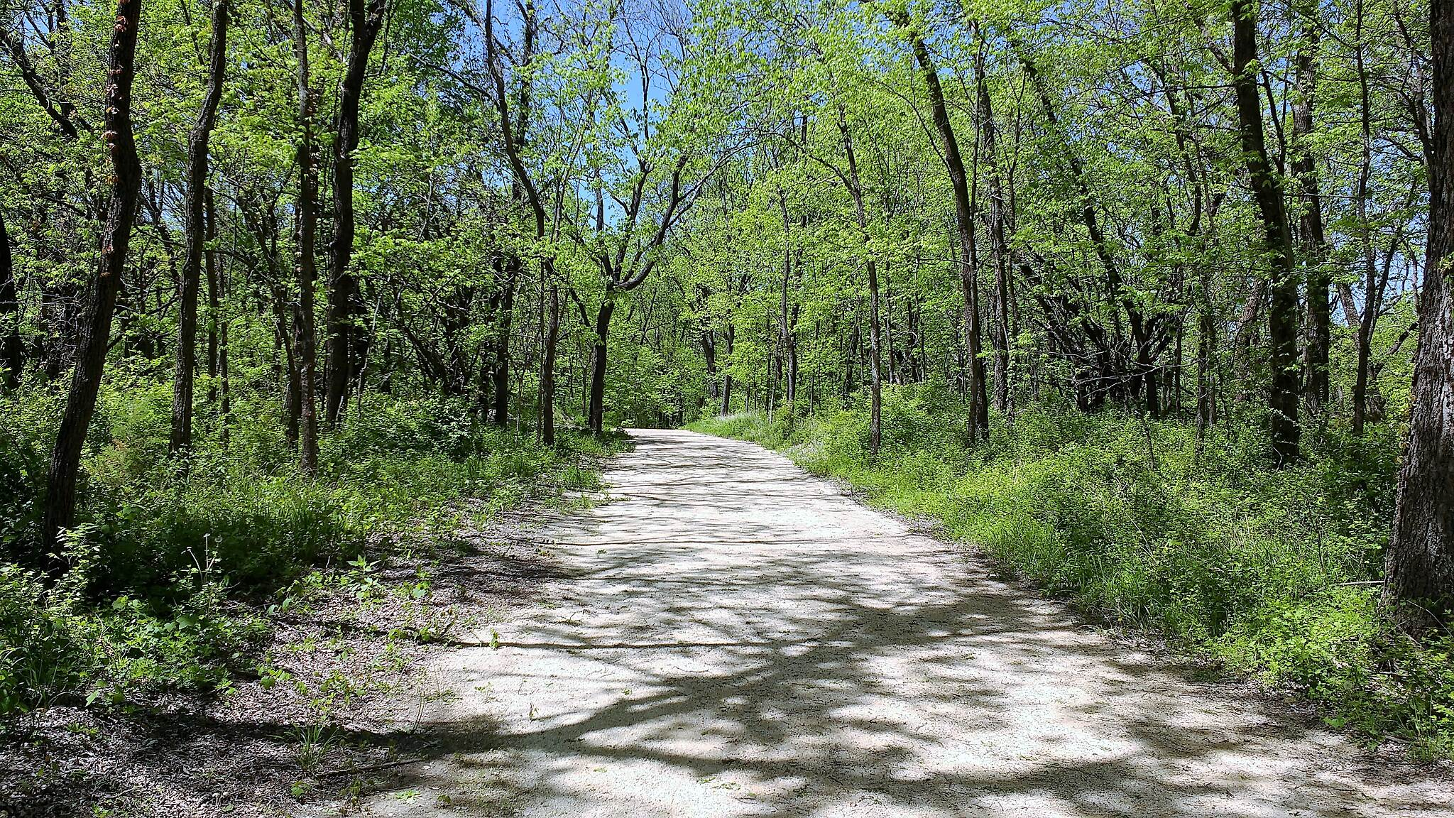 Lehigh Portland Trails Just one of many... The main trail's limestone screenings make an excellent surface for hiking and biking.