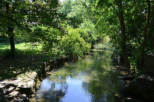 LeTort Spring Run Nature Trail A view from the other side of the bridge