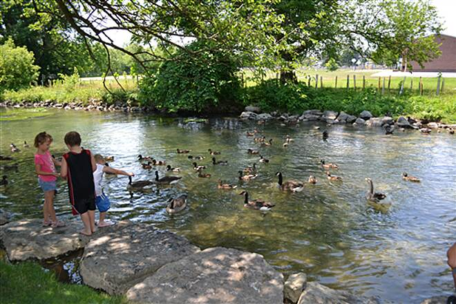 LeTort Spring Run Nature Trail Kids feeding the ducks on the way out