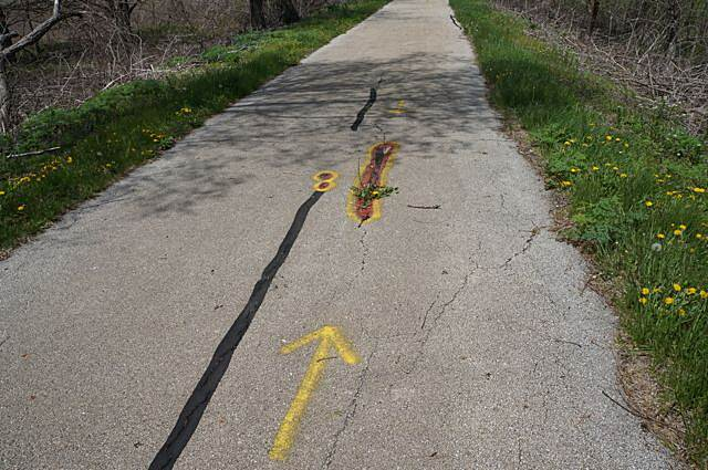 Lincoln Prairie Trail Defects in trail 1 Again, this was no problem...