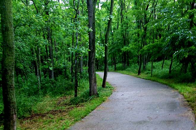 Line Creek Trail The Line Creek Trail This 10-foot wide, cement-paved trail follows the serene Line Creek through the woods of Platte County. Perfect for runners & bikers, expect to see an abundance of wildlife such as deer, rabbits & turkeys.