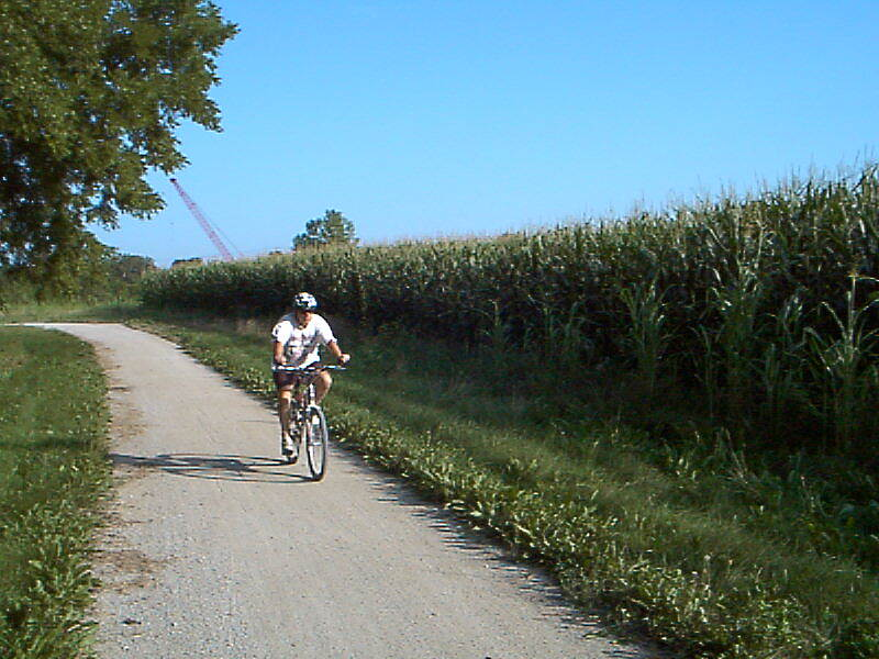 Little Blue Trace Trail Tall Corn Corn and soybeans grow on farmland ajacent to the trail
