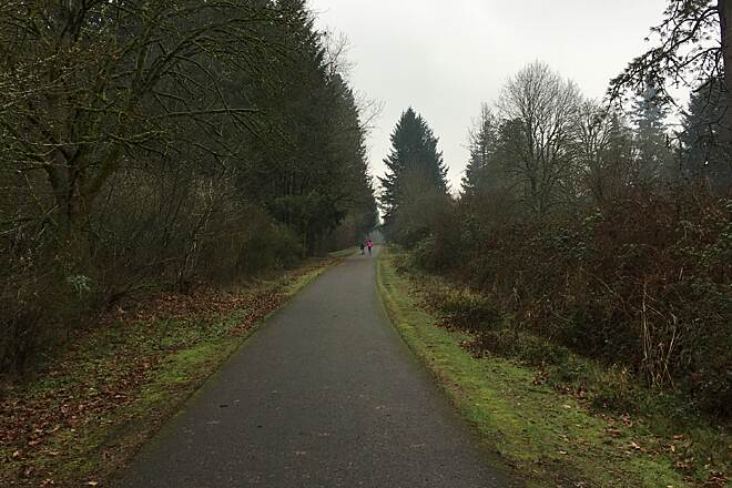 Logging Road Trail Along golf course headed south  Cool, overcast, misty January day.