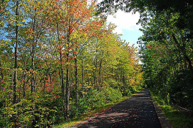 Londonderry Rail Trail Bike Trail Fall colors peaking through in September.