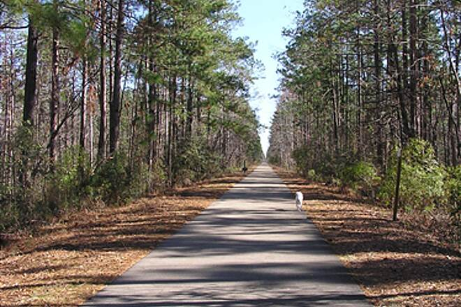 Longleaf Trace Long Leaf Trace Jackson Road Station