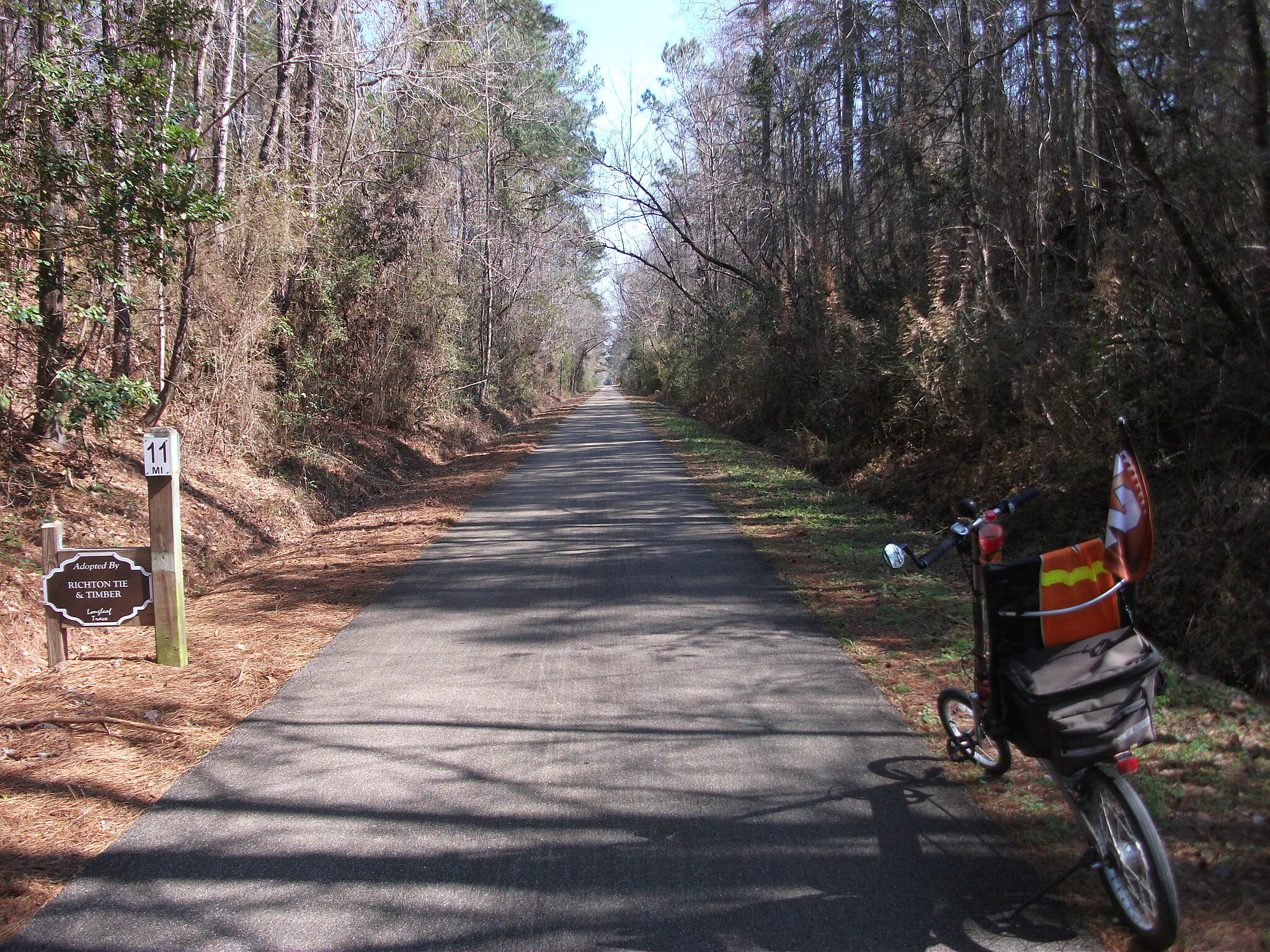 Longleaf Trace Beautiful scenery. Loved riding this trail.
