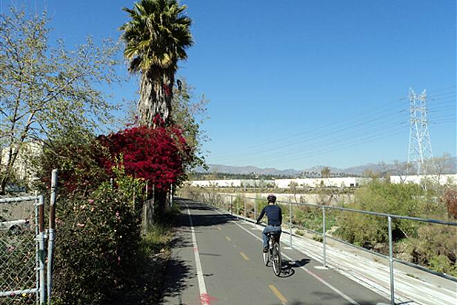 Los Angeles River Trail  Northbound past bougainvillea blooms and palm tree
