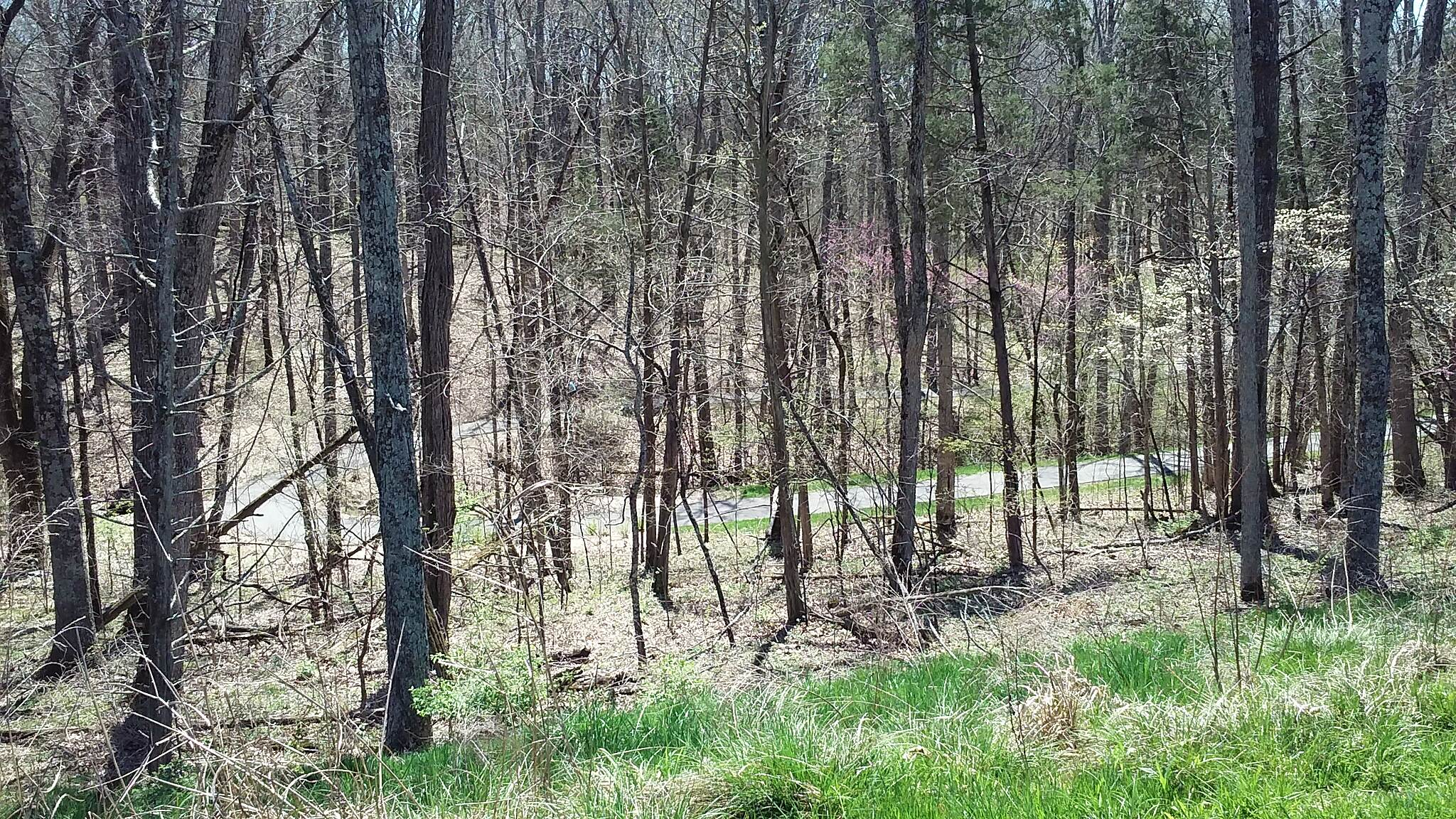 Louisville Loop  Southbound  April 2016 Entering Pope Lick Park trail goes down through two switchbacks and under a railroad trestle and crosses Taylorsville Road