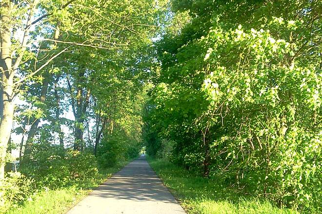 Lycoming Creek Bikeway Lycoming Creek Bikeway  This pic was taken at the North part of the Lycoming Creek Bikeway.