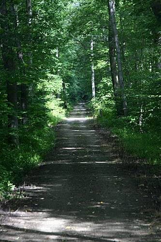 Mahoning Shadow Trail