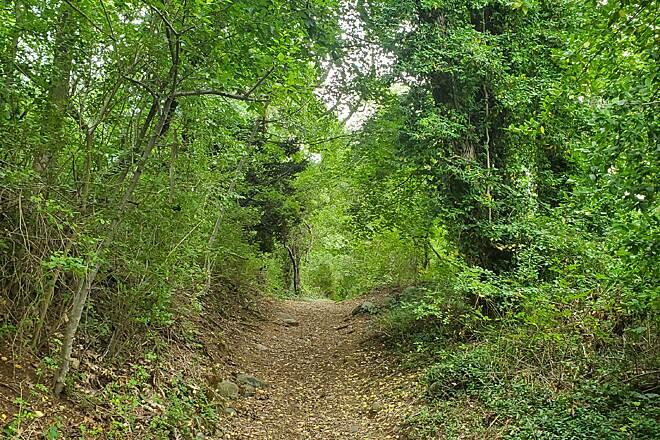 Bike Trails, Walking Trails, Hiking Trails, Trail Maps