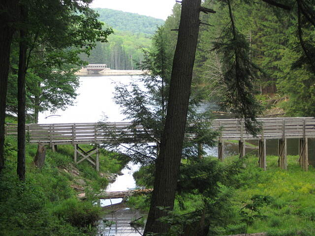Marilla Bridges Trail Marilla Bridges Trail Great hiking with numerous trails!!