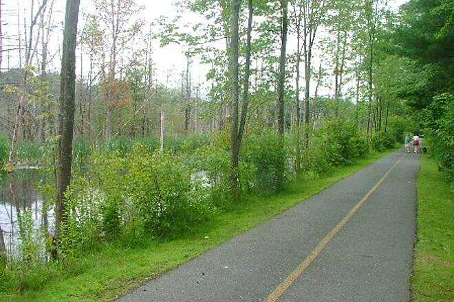 Mass Central Rail Trail (Norwottuck Branch) Lawrence Swamp Conservation Area