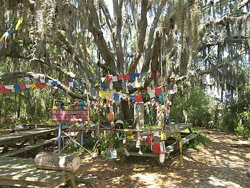 McQueen's Island Trail McQueen's Island Historic Trail 5-2-10 'Reward' in the thicket at the trail's end.  Folk art at its finest . . .