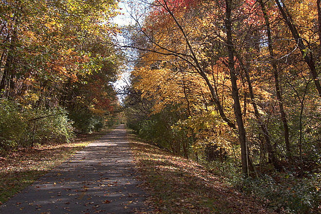 MCT Goshen Trail Fall colors along the Goshen trail I was on a ride to capture Fall colors, and I liked this one I took on the Goshen Trail so much, I made it my wallpaper!