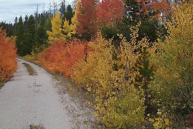 Medicine Bow Rail Trail Amazing Aspen There are many places on the trail where you can find fall beauty.