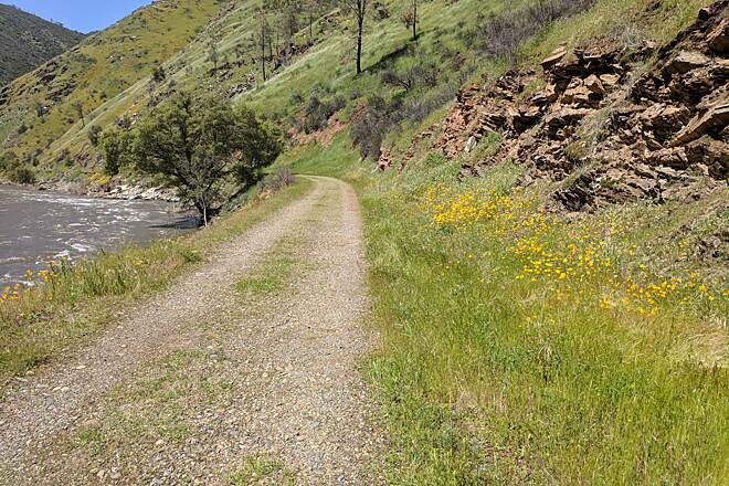 Merced River Trail Walking to the start of the trail Lots of wildflowers in bloom in early April.